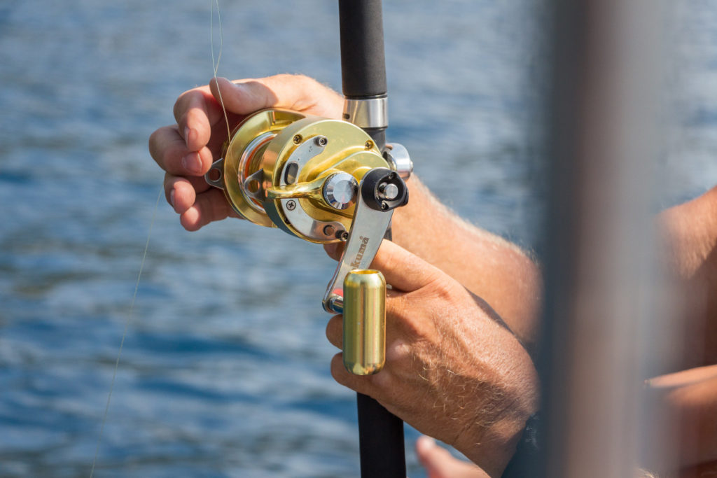 Hand holding a gold fishing reel (Photo by Veit Hammer on Unsplash)